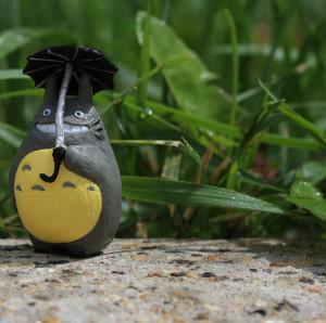 TotoroCrazy's Profile Picture