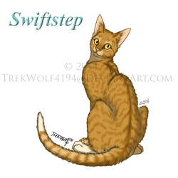 Swiftstep by Wolf-Trek
