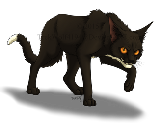 Shadowstep by Wolf-Trek