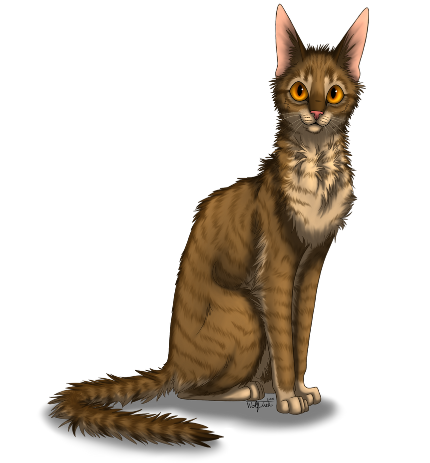 Spotty's MistClan Character Corner - Page 2 Sunwhisker__wolftrek___png__by_trekwolf4194-darclq7