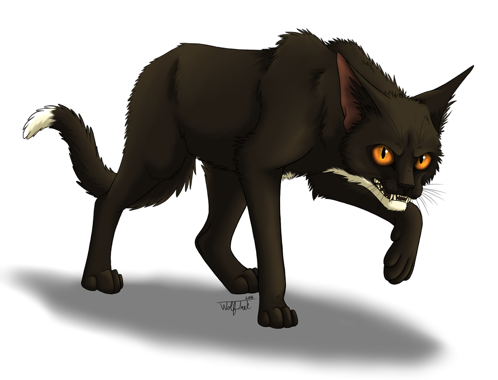 Spotty's MistClan Character Corner - Page 2 Shadowstep__wolftrek___png__by_trekwolf4194-dard4ew