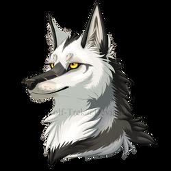 Chayton Headshot by Wolf-Trek
