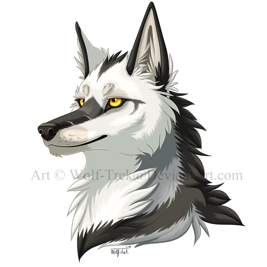 Spotty's WotS Relationship Trackers Chayton_headshot_by_wolf_trek-db4tiku