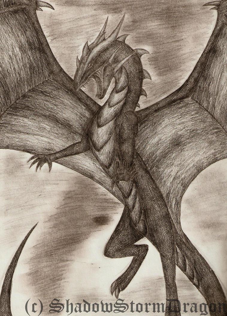 Dragon Studios ___storm_dragon____by_shadowstormdragon-d2yr99m