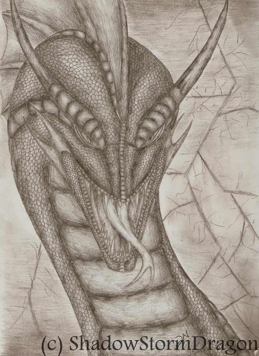 Dragon Studios ___thunder_guardian____by_shadowstormdragon-d30vxix