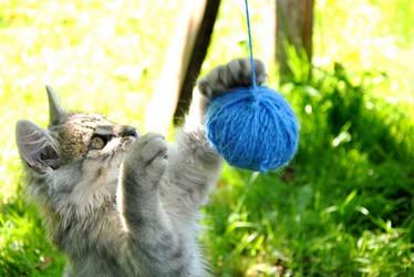 I catch it by Katheerine
