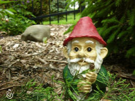 The Gnome by Aussieboy2323