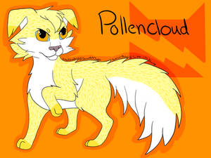 Pollencloud of ThunderClan