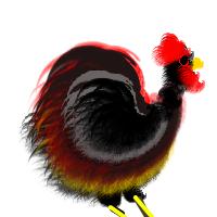 Cock by irishhighlander