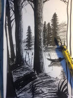 Woods by the lake by dvirrocks