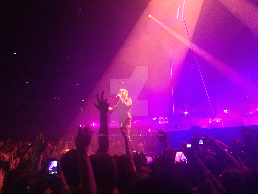 Muse Concert 13/12/13 - Matt Bellamy #2 by Megalomaniacaly