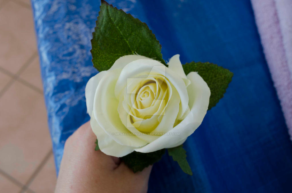 White Rose by Megalomaniacaly