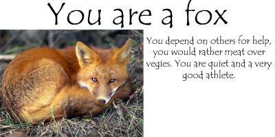 3099 Fox Personality Quiz Results By Danzy007 On Deviantart