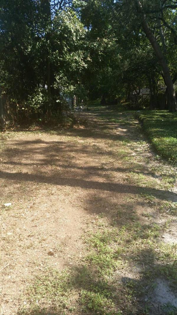 on my walk home, the Super secret path by VioletTutu