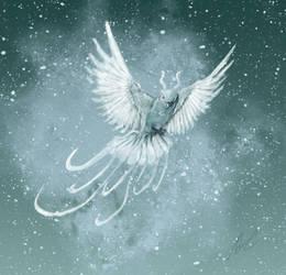 The silver snowbird
