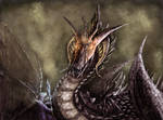 The Black Dragon Lord