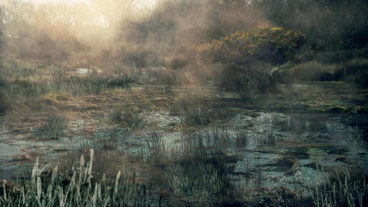 Swamp by Silinde-Ar-Feiniel