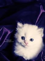 Purple eyes by mayat-s