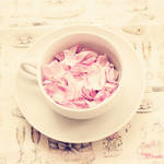 Cup of Roses