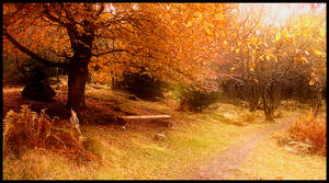 Its fall by Oweha