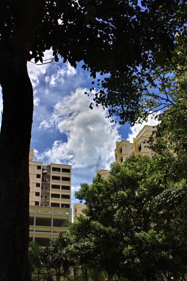 Clouds 9 by Nandaka