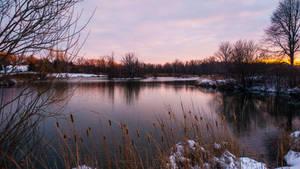 Pond in Henrietta, New York