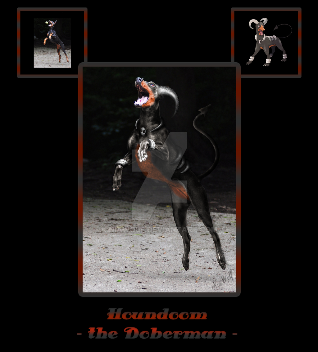 Houndoom, the Doberman by NiaWolf