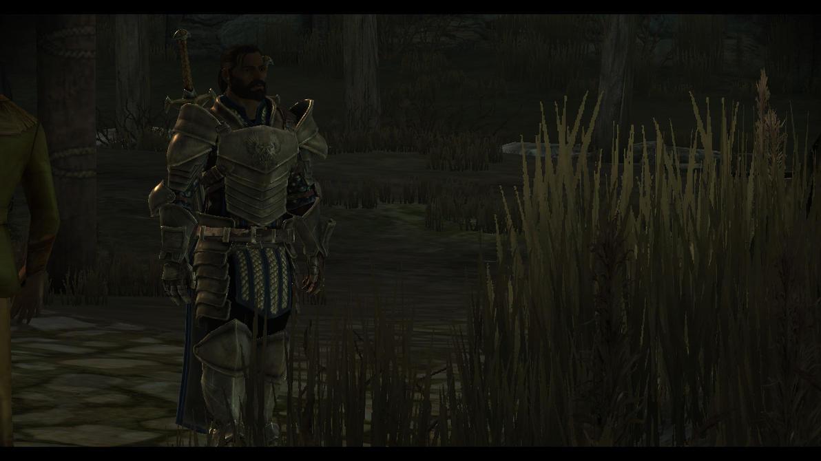 Grey Warden by LordVetinari1