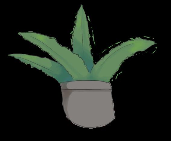 Design a Flora - Aloe by RascalWabbit
