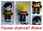 Young Justice Robin Plush