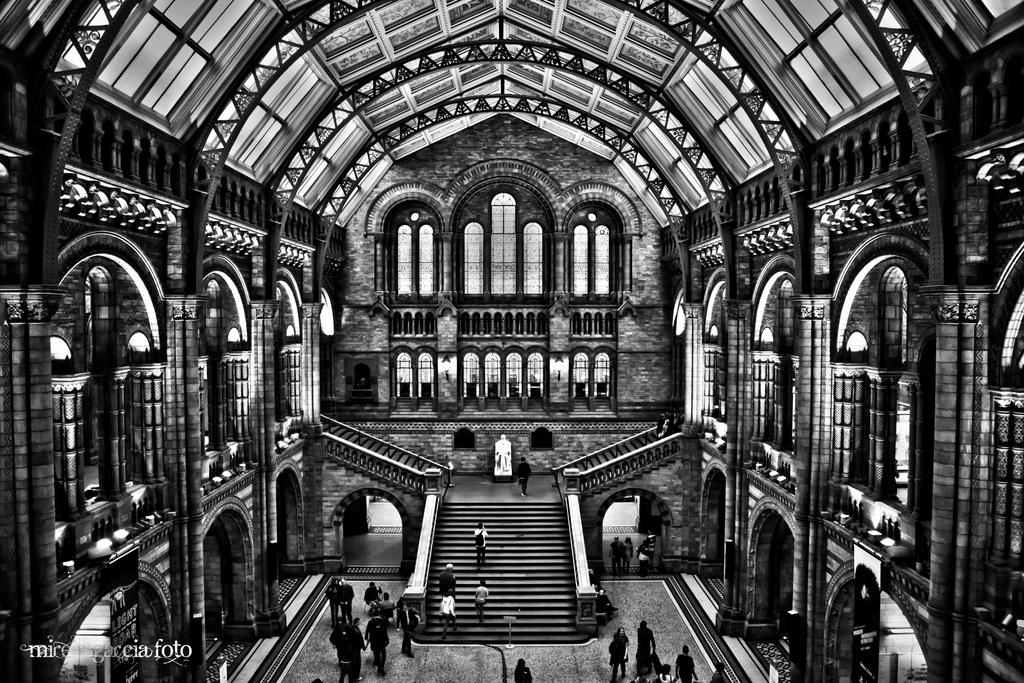 Natural History museum (B and W version) by trencapins
