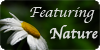 Featuring Nature icon by AdmiralSnow