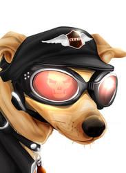 galaxy dog by vinciruz