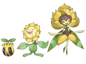 Sunflora evolution