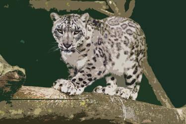 Snow Leopard by rosswillett