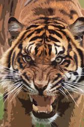 Tiger by rosswillett