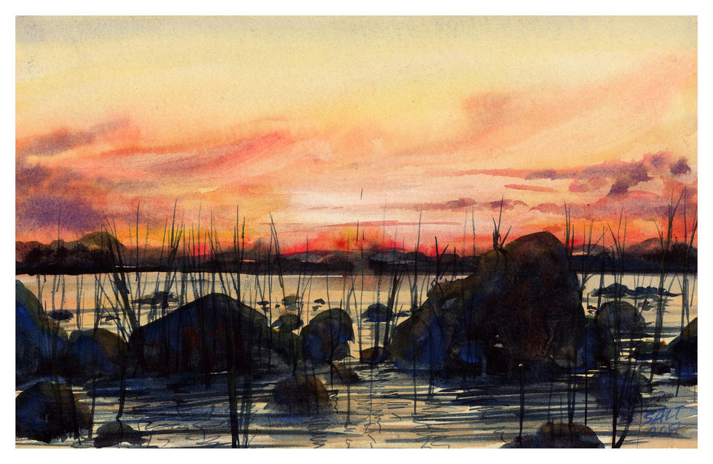 Perspectives- South by SALTWatercolors