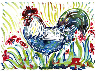 Little Yupo rooster