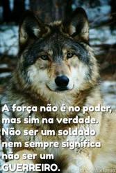 Verdade by CachorroSenhorTorrao