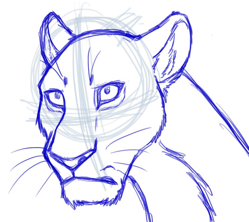 Lioness Head Drawing Semi Realistic Lioness Head Sketch by Foxfire5634