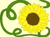 sunflower wallpaper by madna29