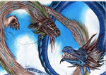 Dragons.. fighting???