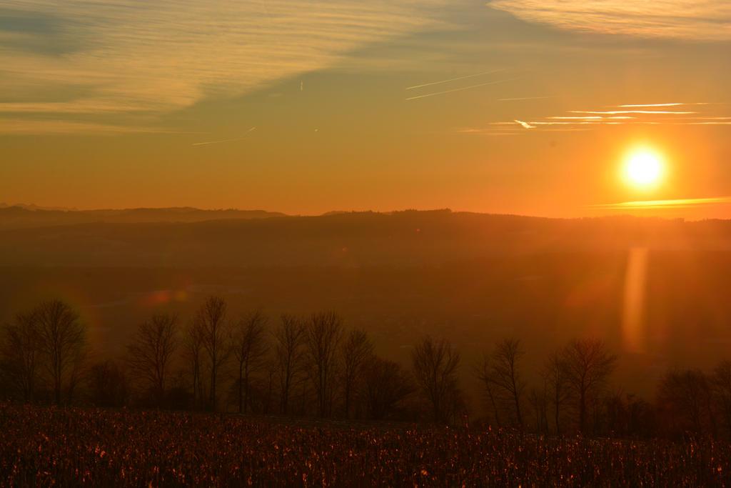 Sunset Landscape 2 by SelvaStock