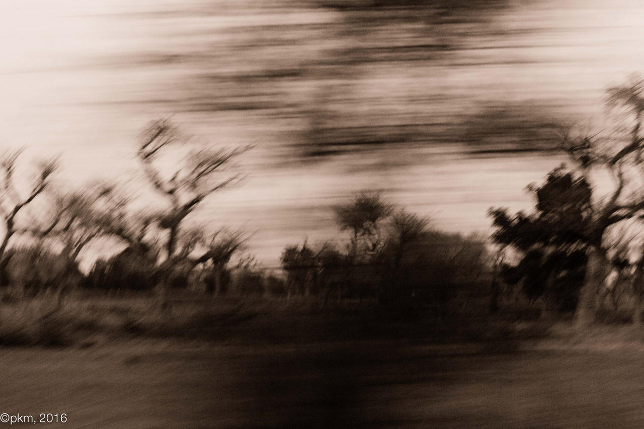 Ghosts of africa by PokerMenteur