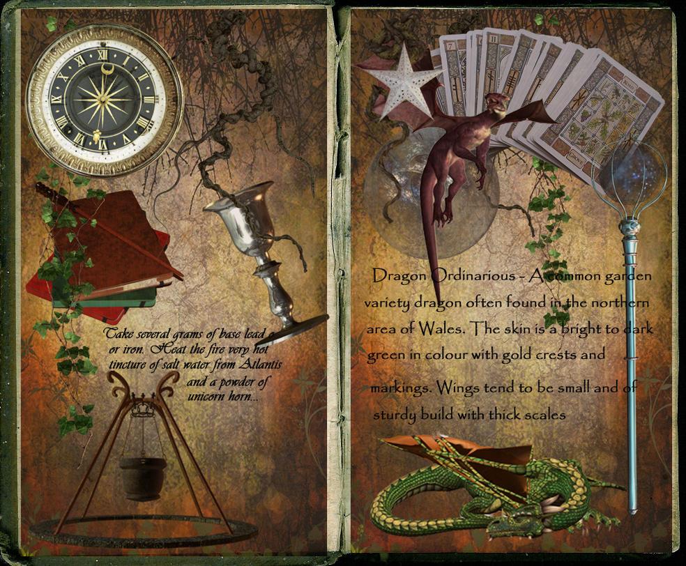 Wizard S Book By Scarlettletters On Deviantart
