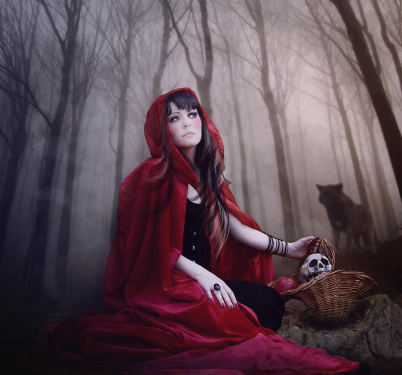 The Lady of the Wolves by Scarlettletters