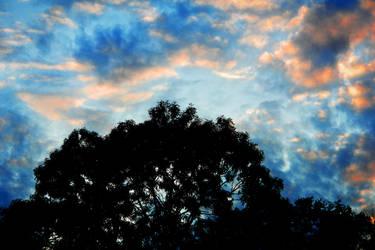 Sky variety by Nazareanu