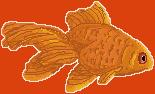 Fish by phyti