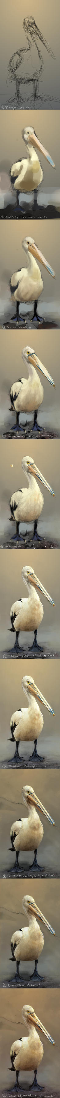 Pelican - Steps by LindseyWArt