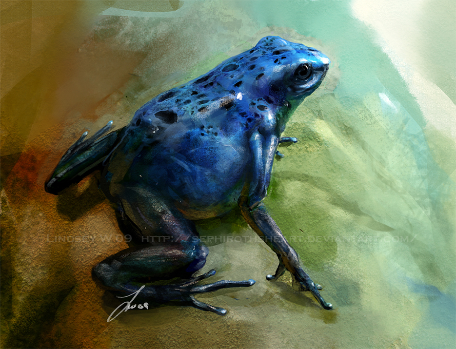 Study: Poison Dart Frog